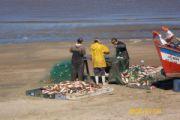 La pesca artesanal puede ser una actividad sustentable
